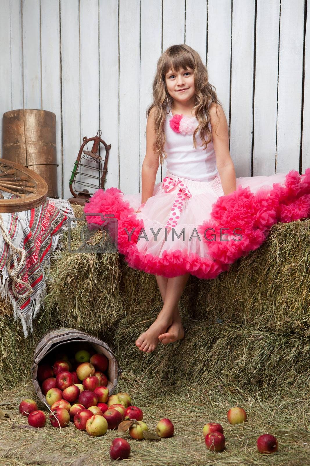 Portrait of barefooted funny little blond girl villager dressed luxuriant wavy ball dress with frill sitting on haystack near inverted pail with apples in wooden vintage hayloft