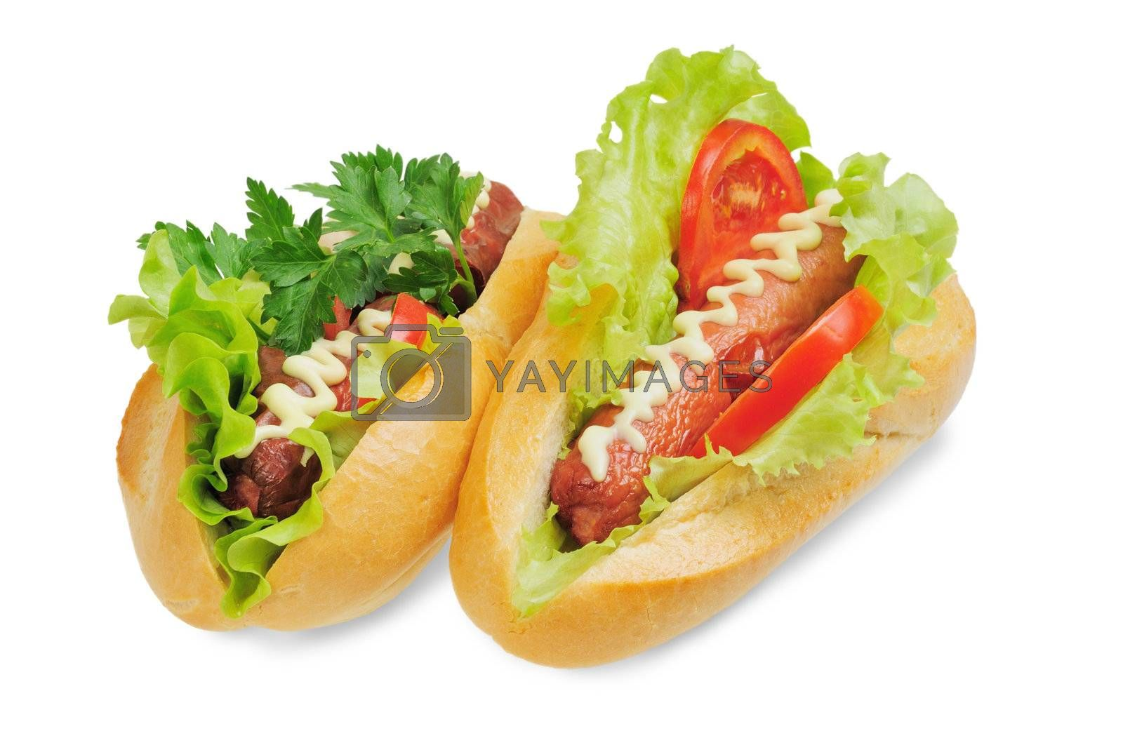 Two tasty and delicious hotdog. Isolated on white.