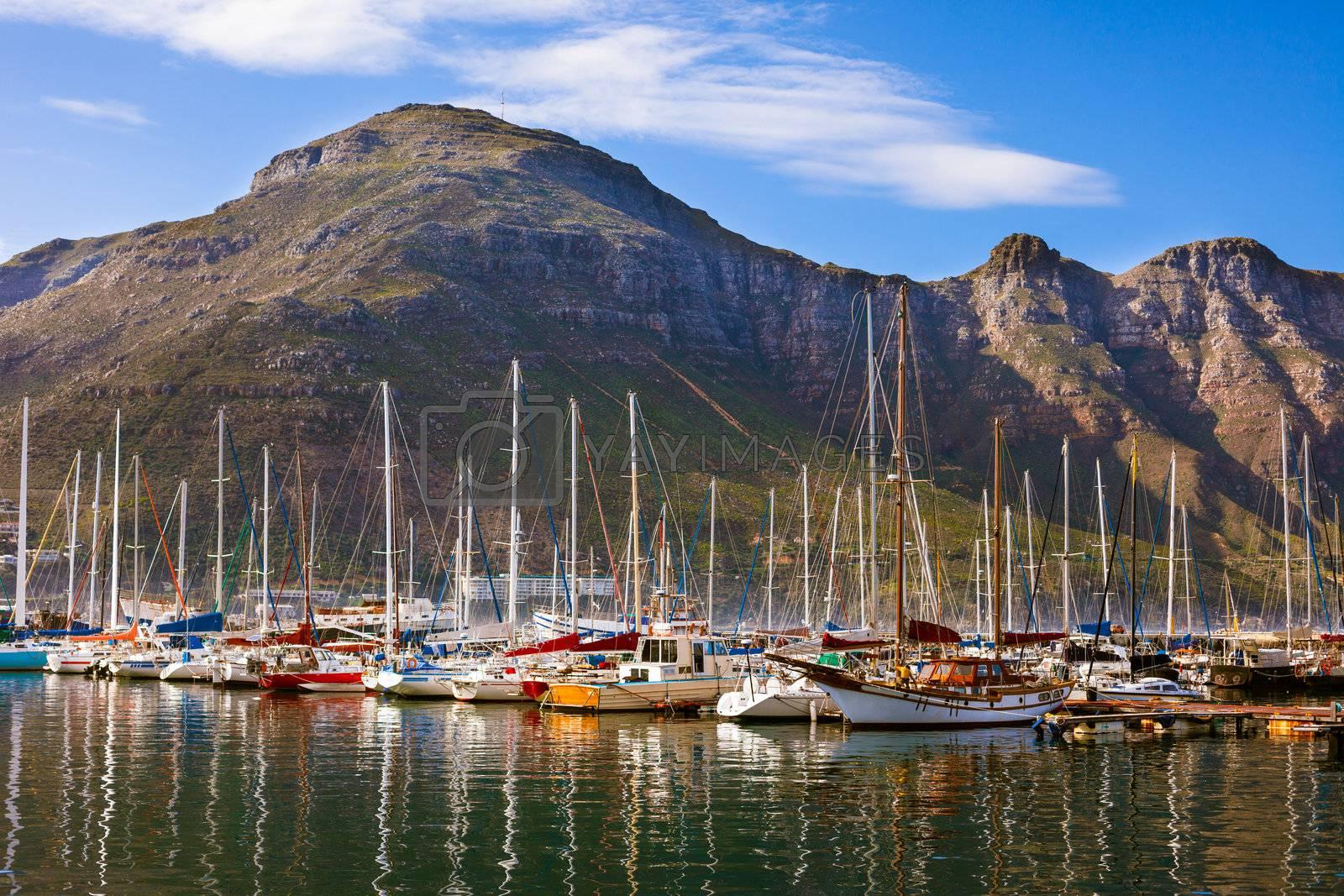 Saiboats at Hout Bay Marina, South Africa