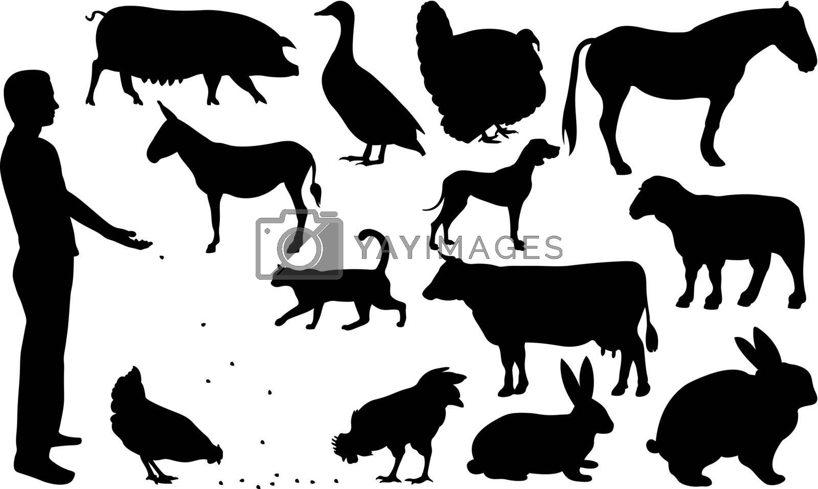 set of different farm animals isolated on white
