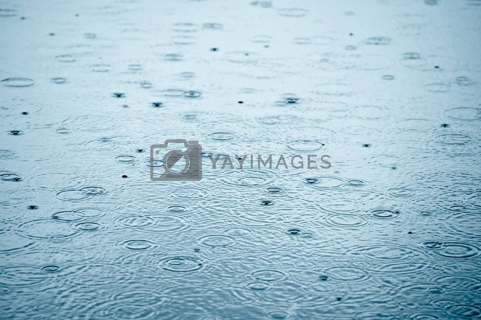Rainy weather by naumoid