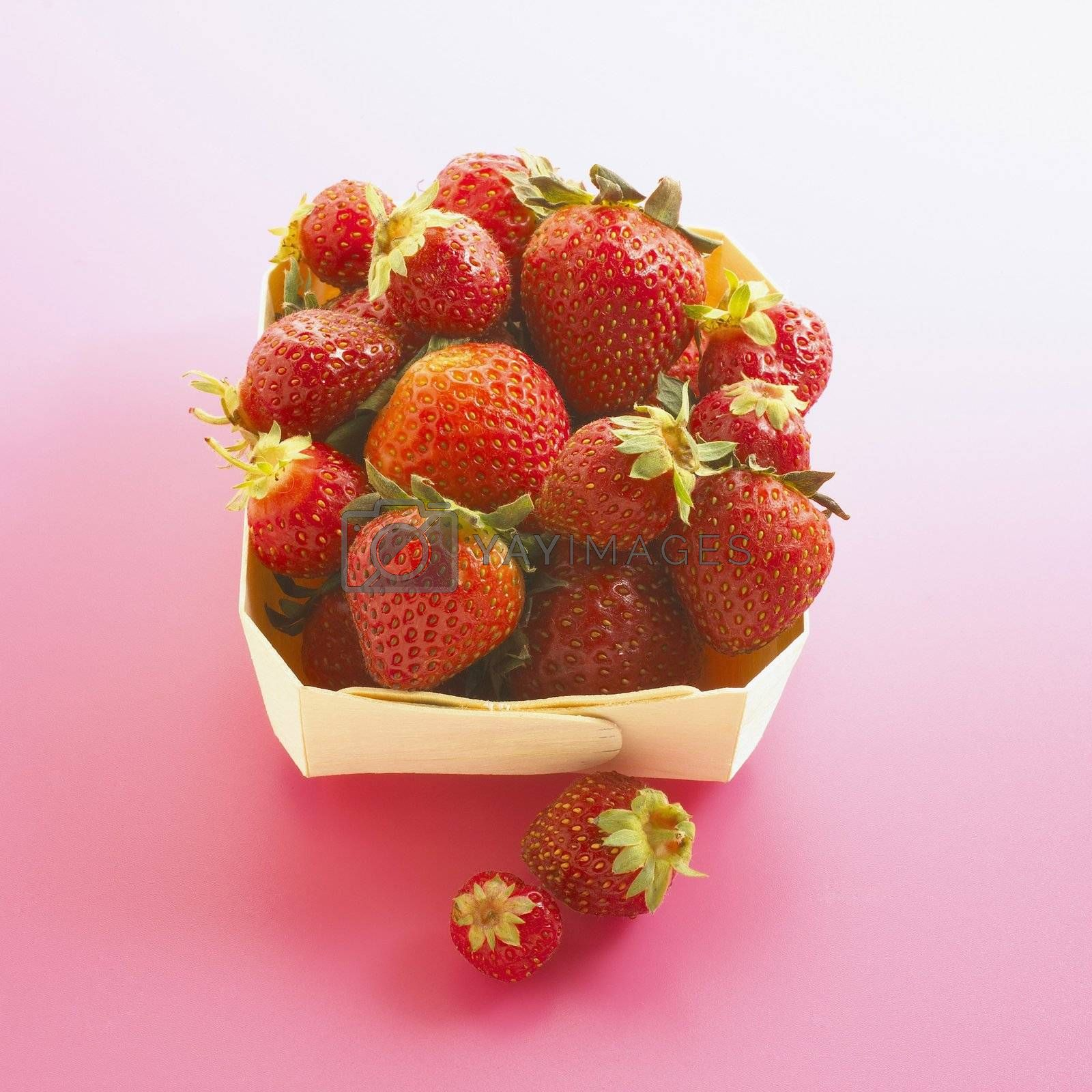 Organic Strawberries in Carton