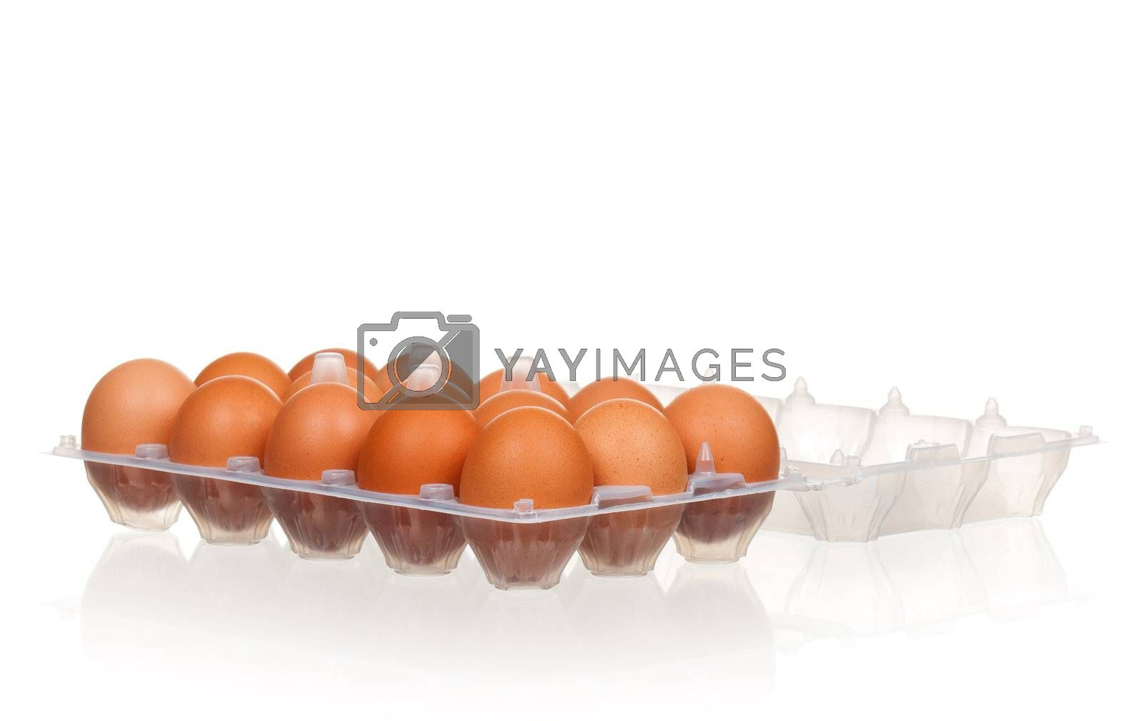 Brown eggs in the plastic box over white background