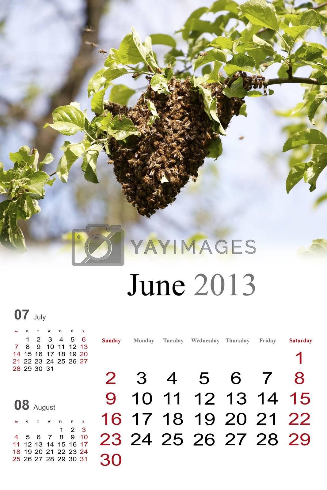 2013 Calendar. June