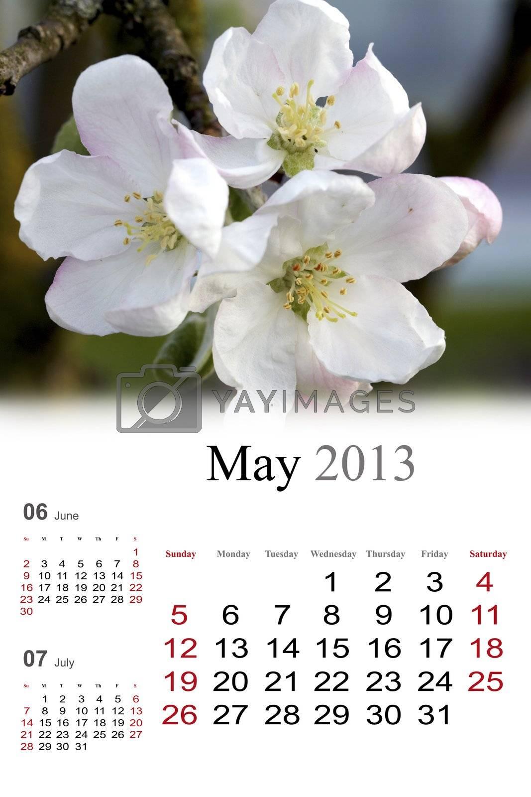 2013 Calendar. May by Nikonas