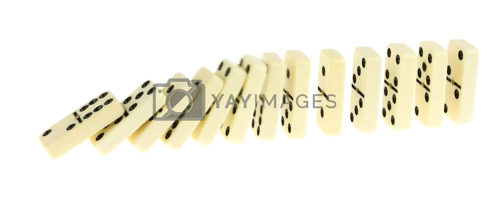Long train of dominoes falling over, white background