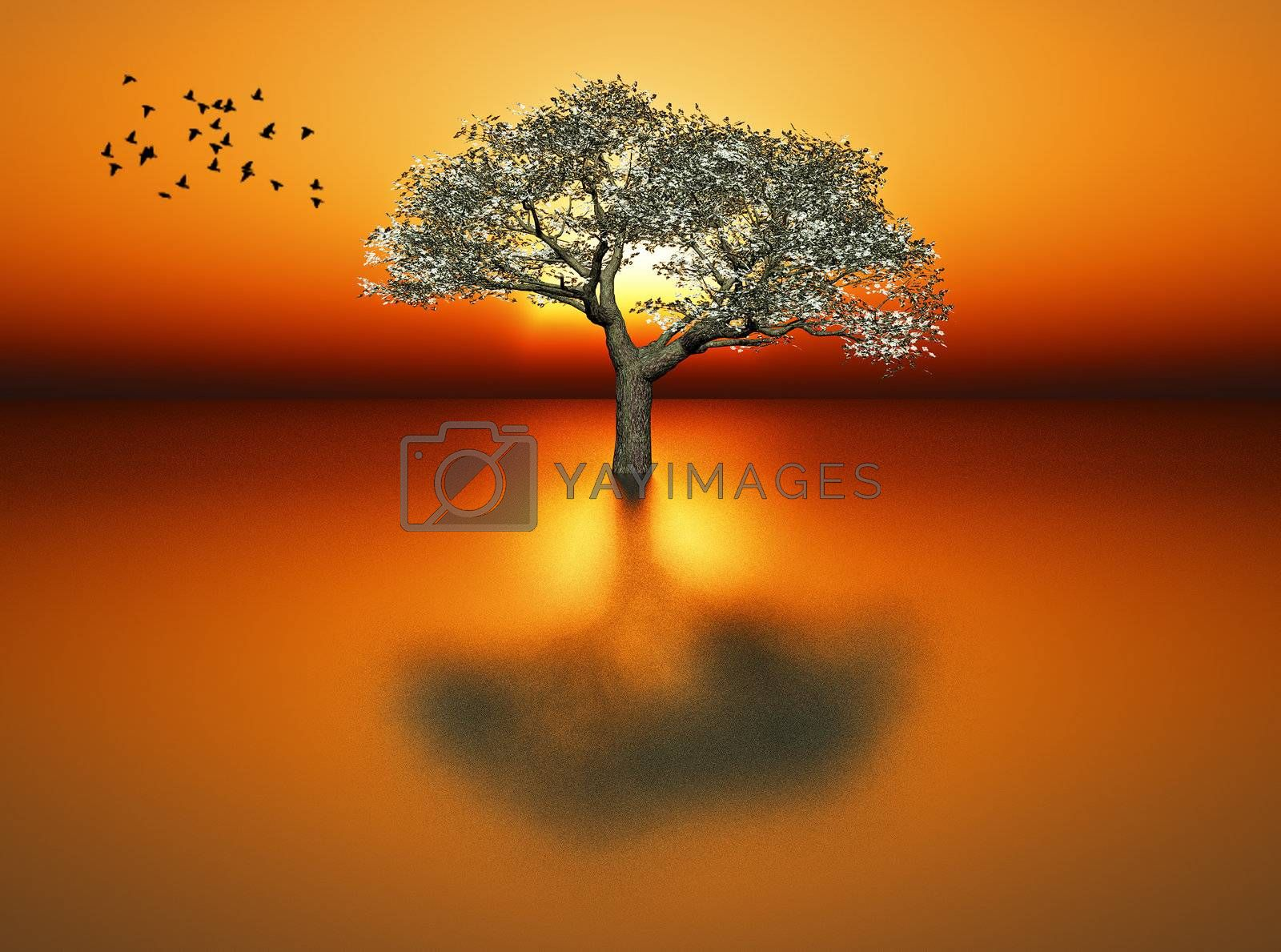 a tree with a sunrise in the background