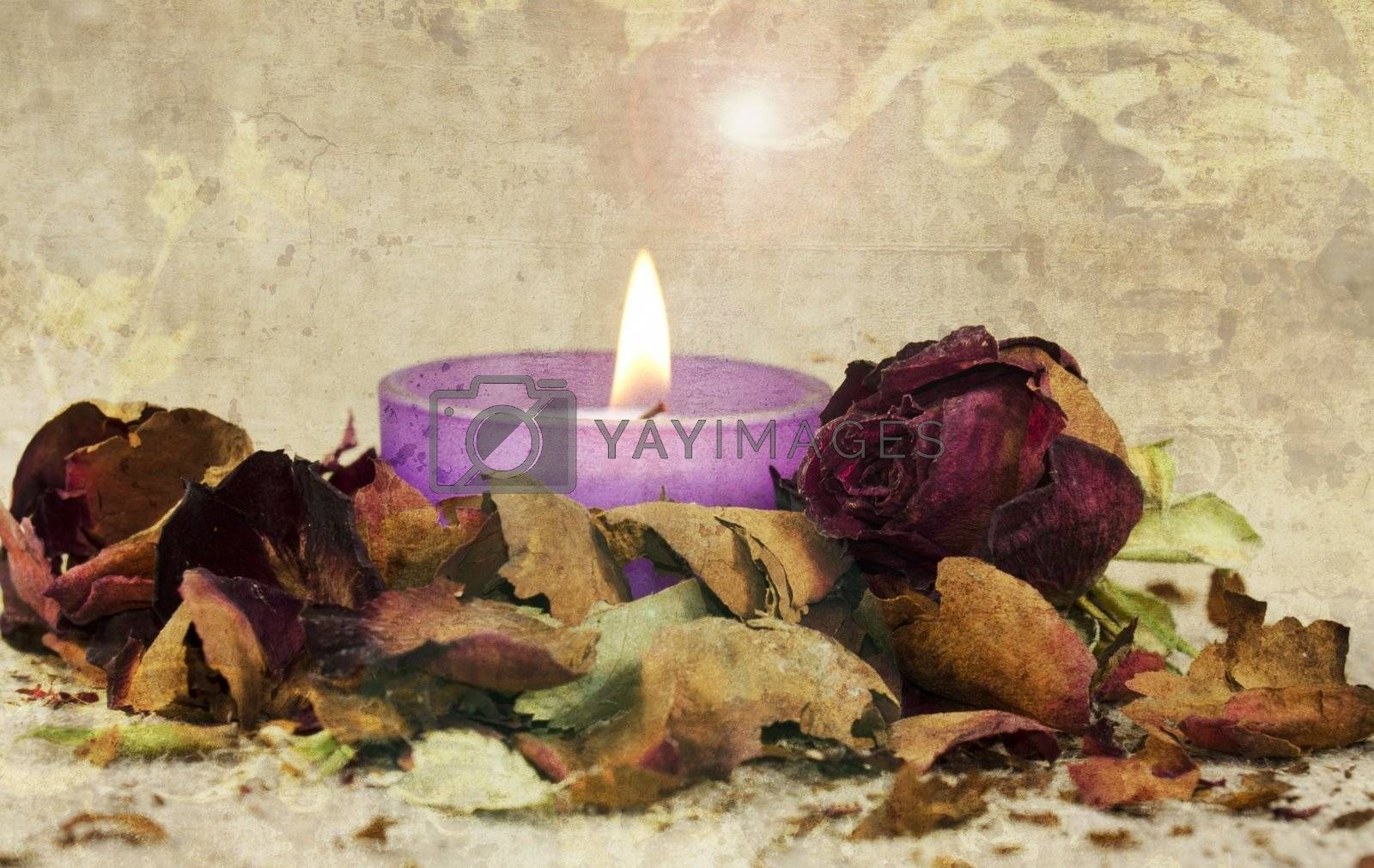 poetic composition with faded rose and candle