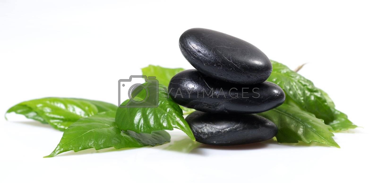 zen basalt stones and green leaves, still life