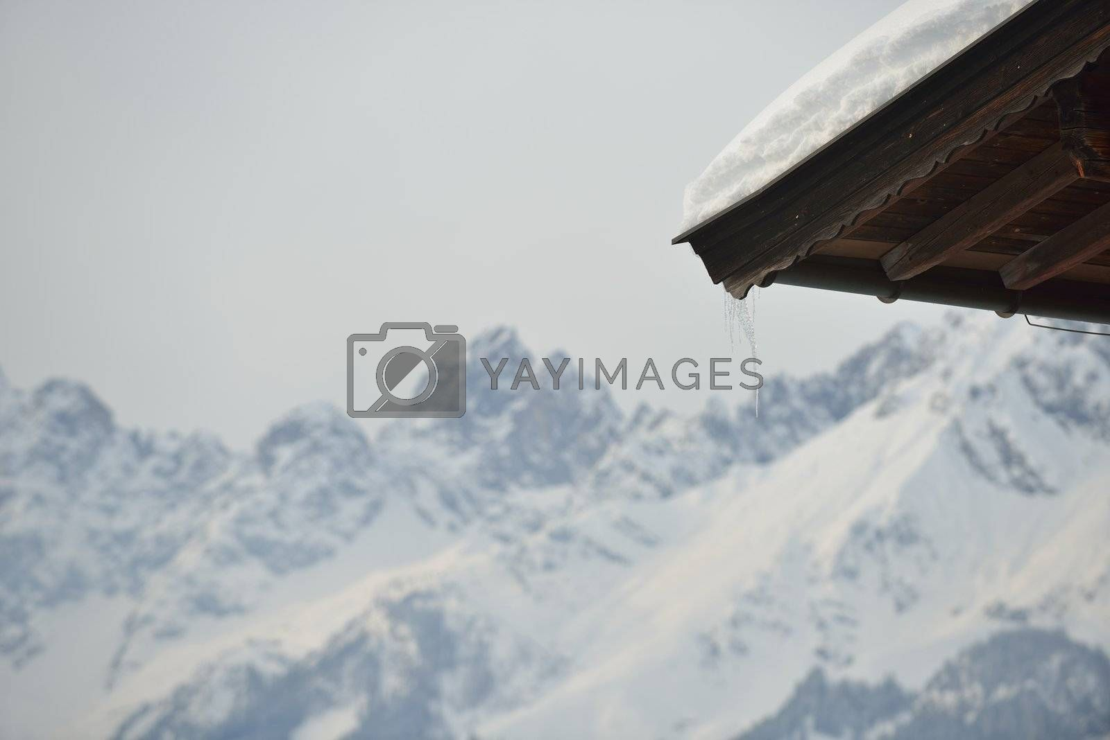 nature mountaint winter landscape with tree and fresh snow