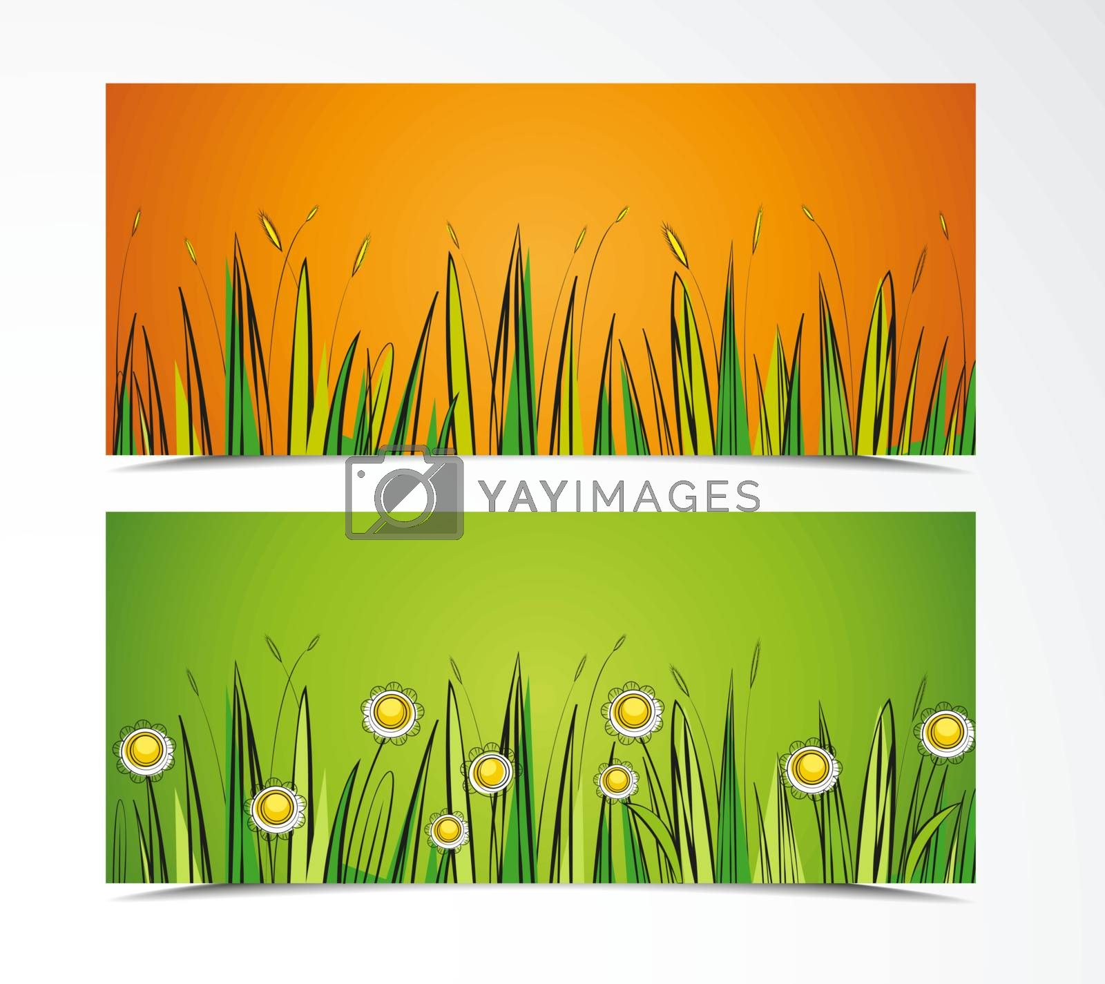 two color background with grass and flowers