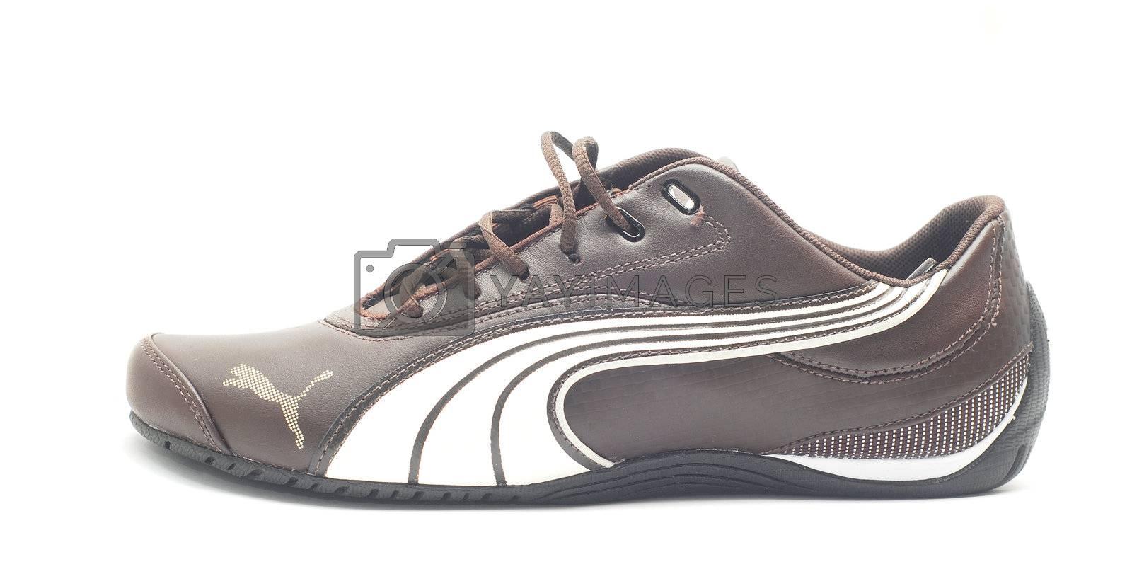 Caransebes, Romania - November 6, 2012 - Puma sport shoe isolated on white