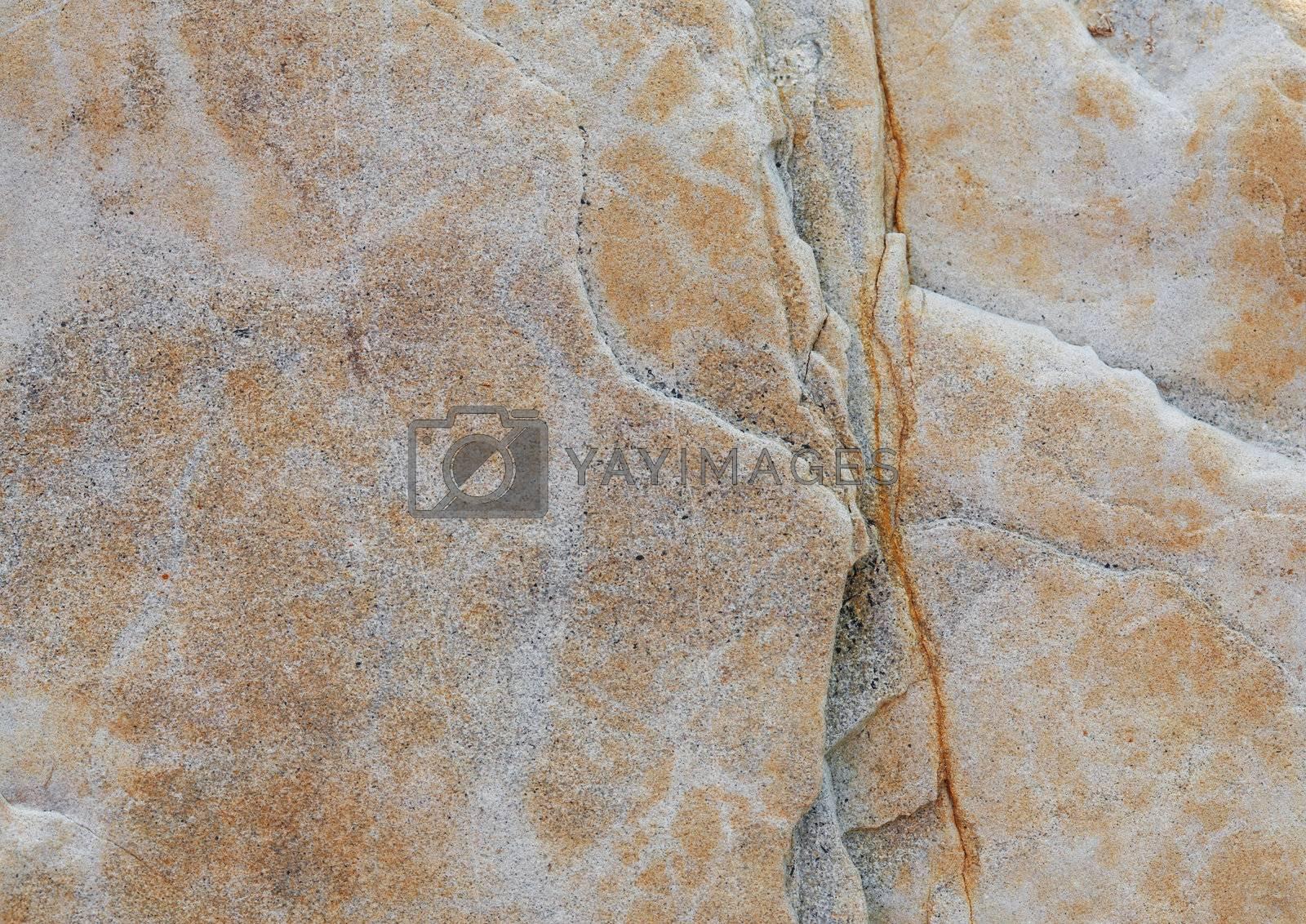 Royalty free image of Stone Texture by romanshyshak