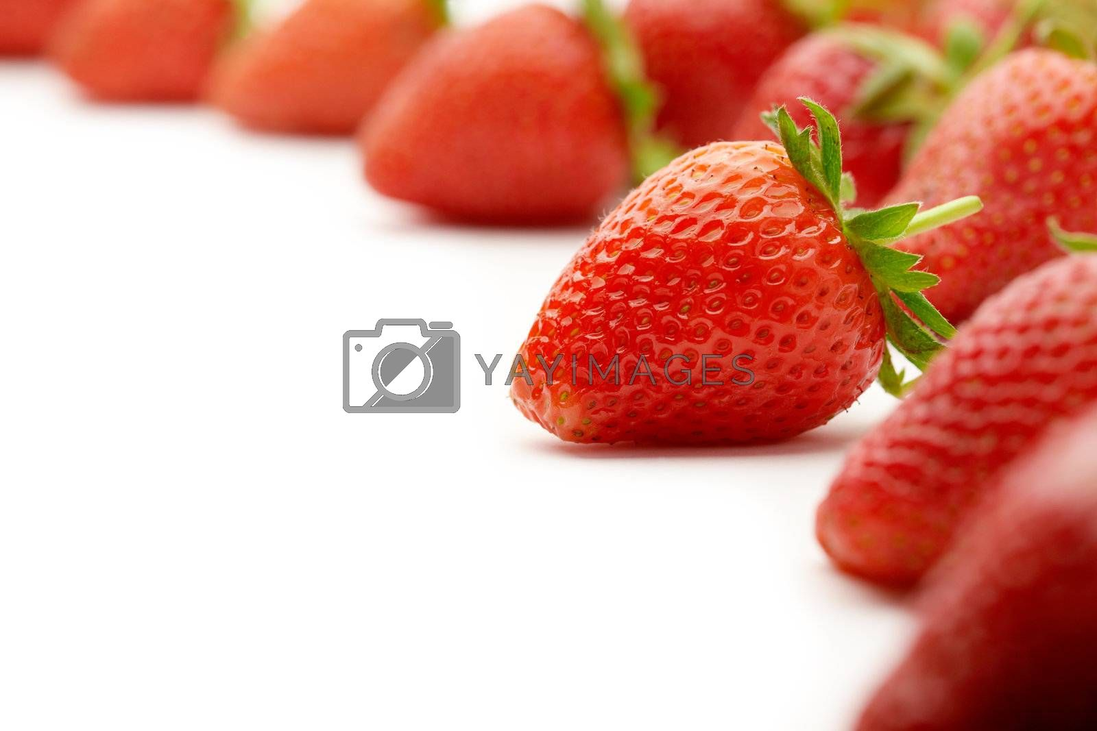 Strawberries with green leaves.This image is focused on one of them