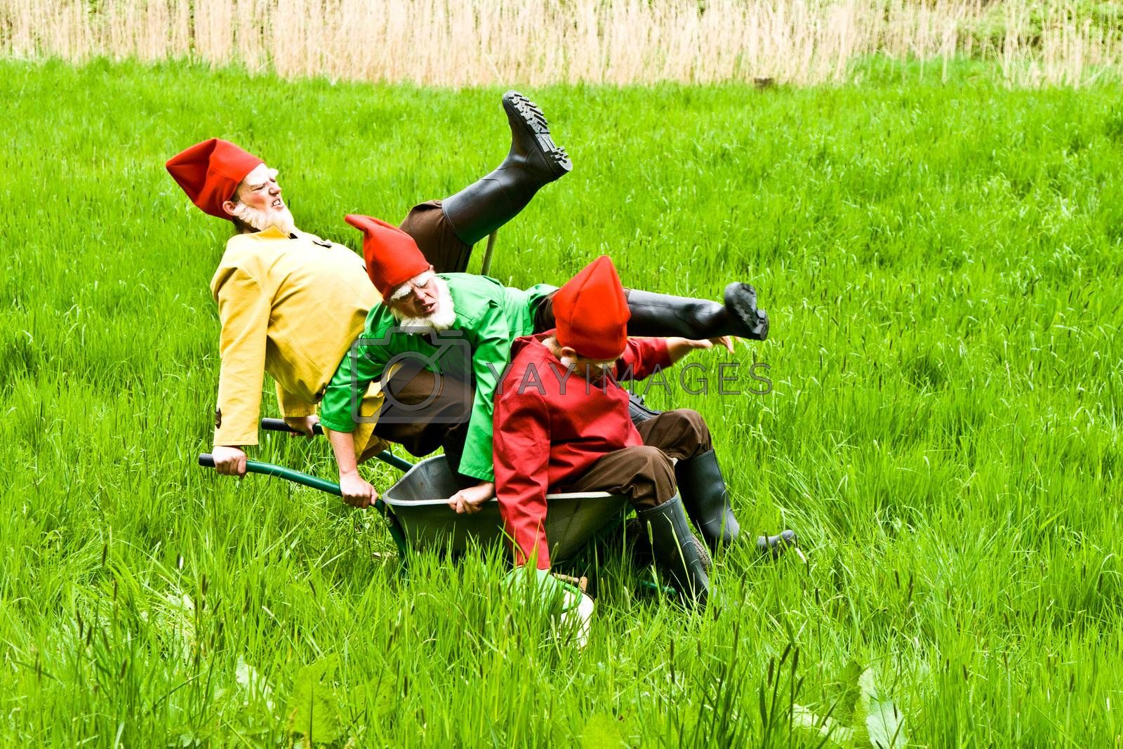 KRONBERG, GERMANY - MAY 01: three garden gnomes enjoy children at the festival for inauguration the New Quellenpark Kronberg on May 1, 2011 in Kronberg, Germany. The Quellenpark is a place with fresh natural mineral water and fertile marsh.