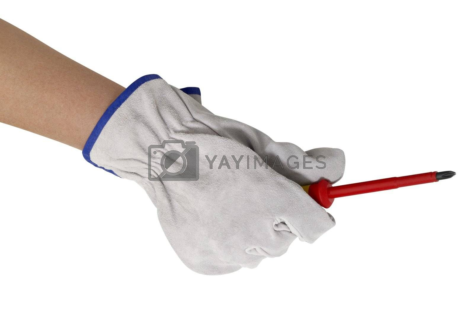 hand gloved with a light grey working glove holding a screwdriver.Studio shot in white back
