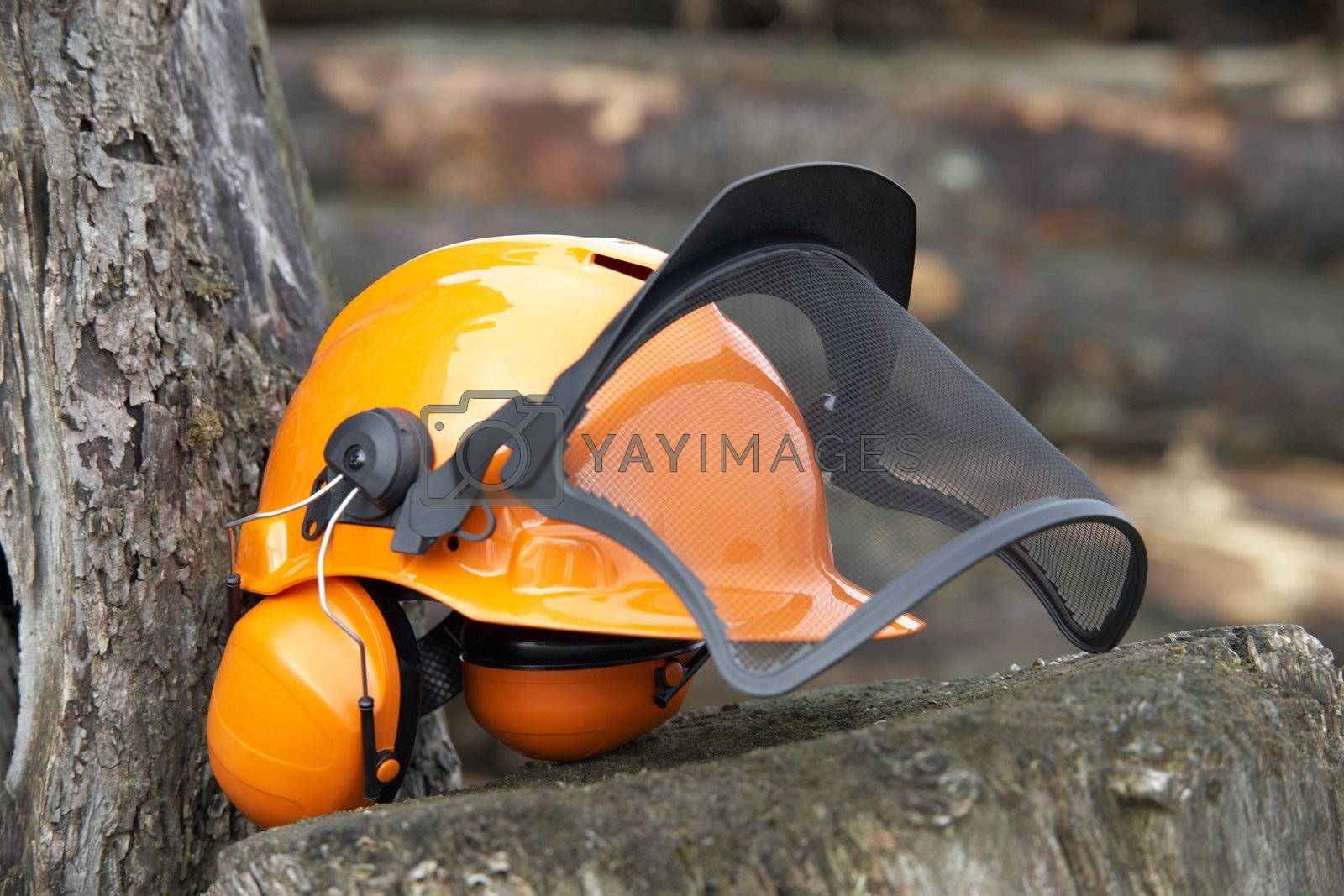 orange protective helmet with ear- and face- protection.  Outdoor shot in woody ambiance