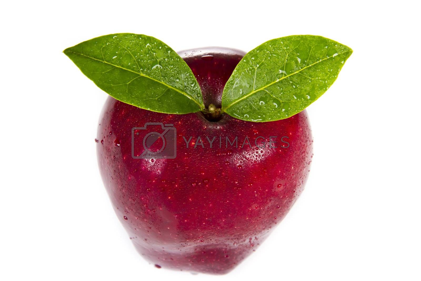 Red apple with leaves on white background