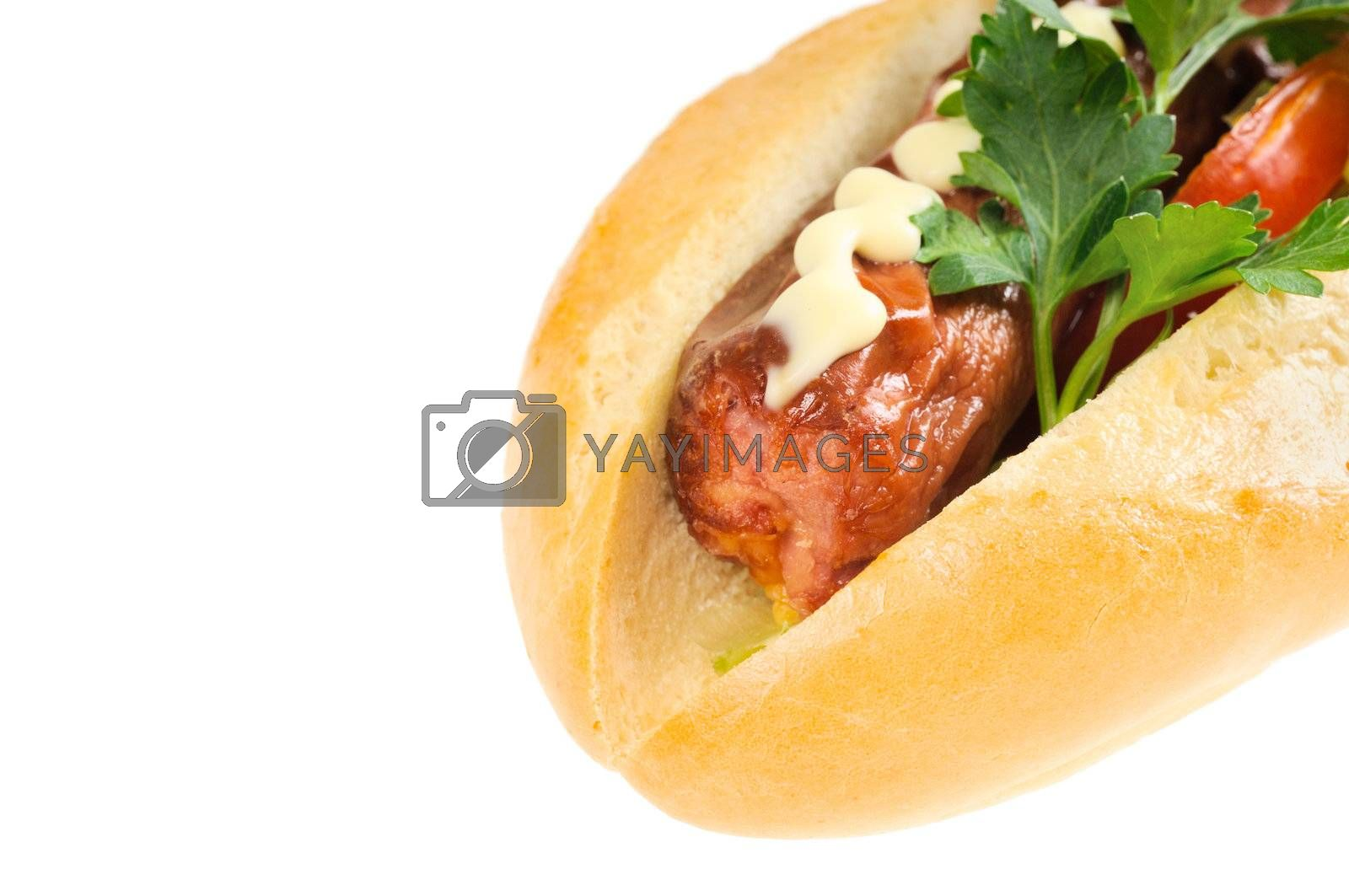 Royalty free image of Tasty and delicious hotdog by grauvision