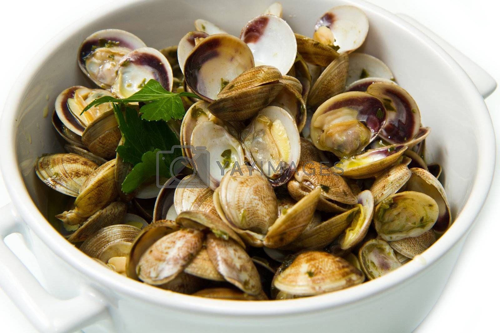 white bowl of clams soup with parsley on white background