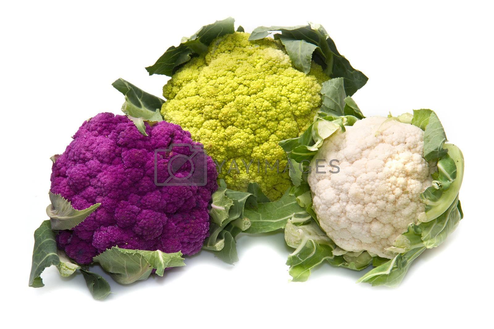 tris of Fresh cauliflower on white background