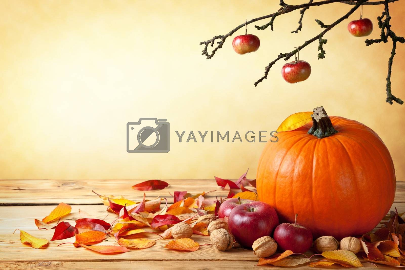 Autumn pumpkin composition on wooden table with copy space