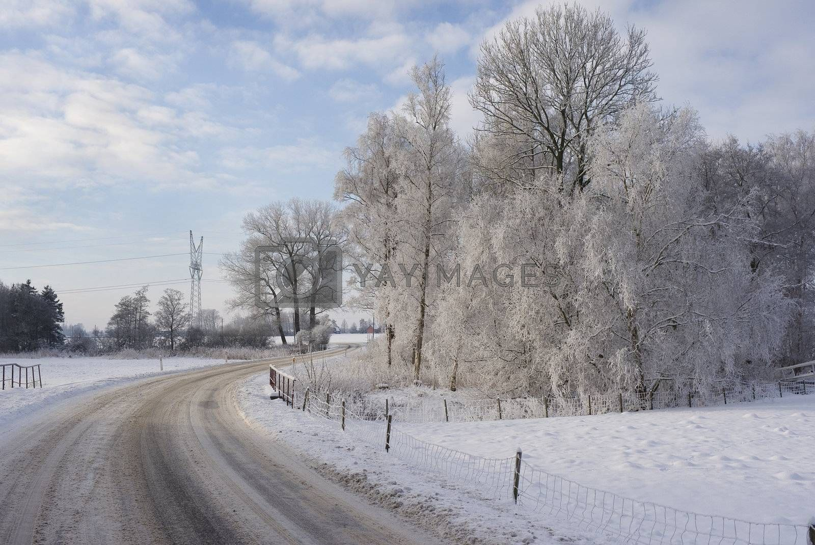 Beautiful winter countryside after snow - Denmark.