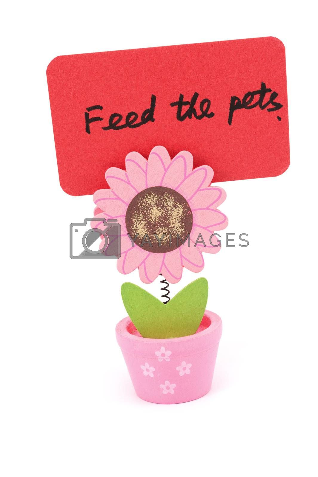 Feed the pets words written on red paper of sun flower pot clip