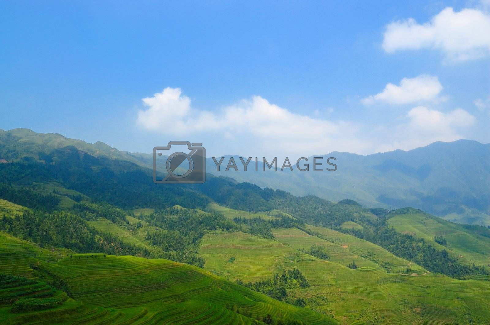 Scenic view of agricultural fields in countryside of Guangxi province, China