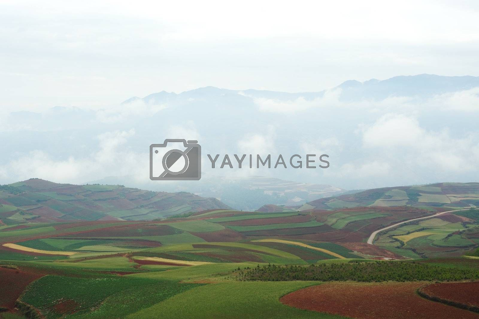 Rural colorful field landscape in Dongchuan district, Yunnan province, China