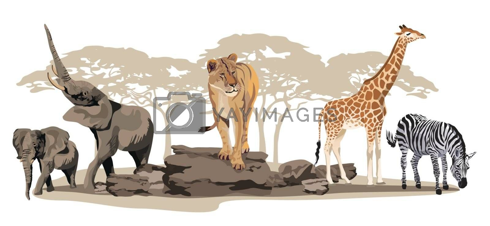 Illustration of African animals on savannah isolated on white