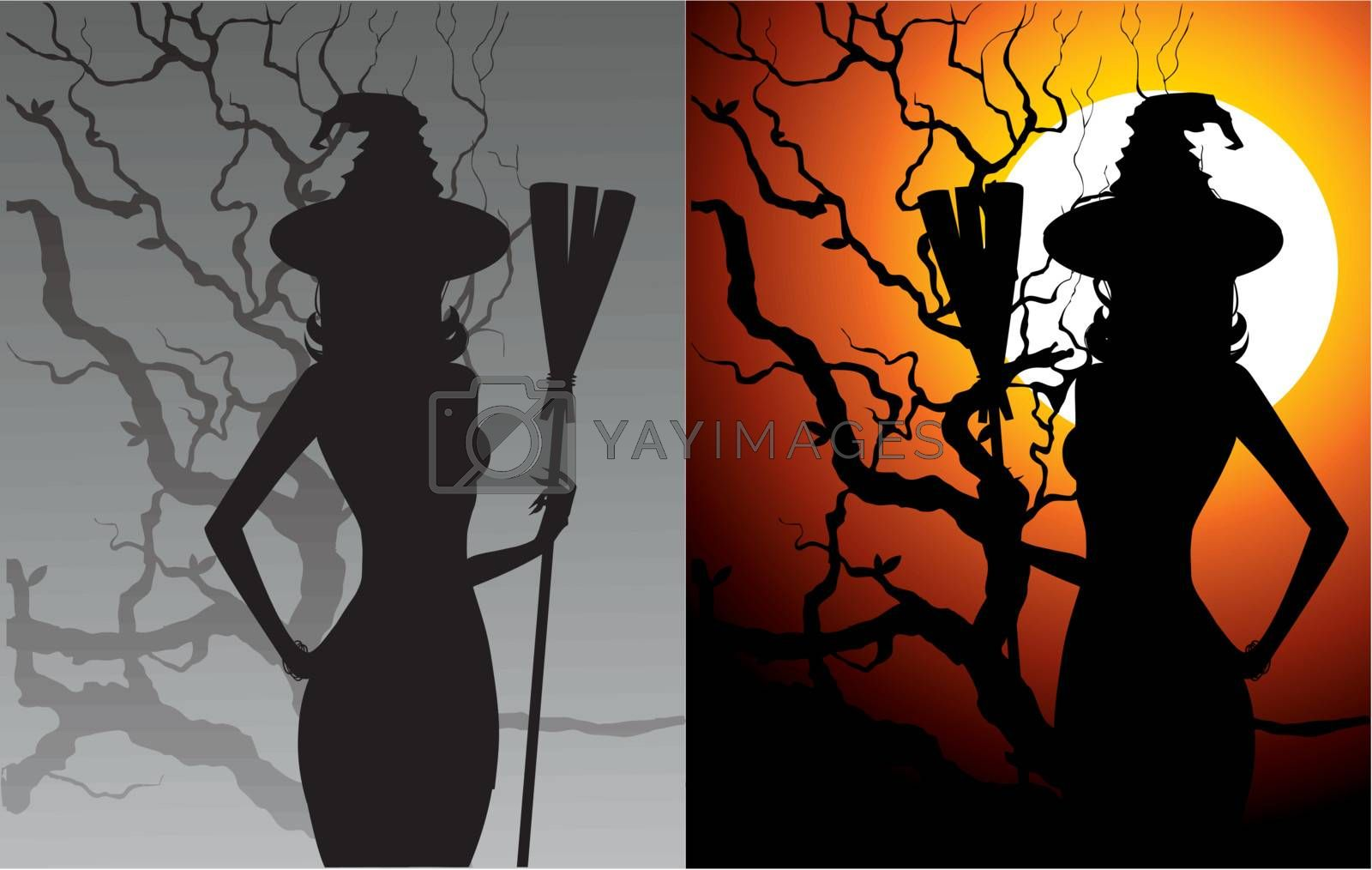 Sexy witch, vector