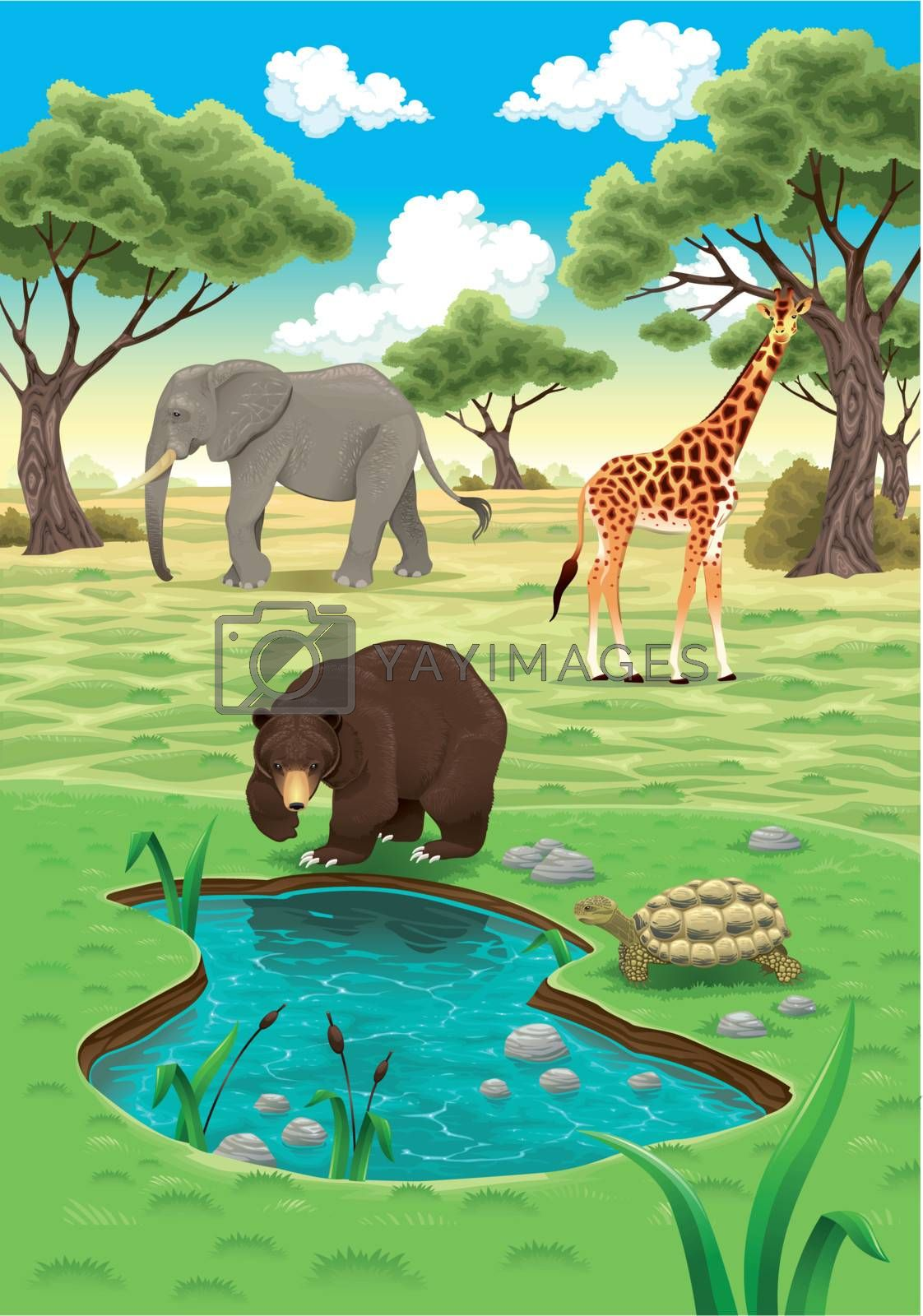 Animals in the nature. Vector realistic illustration.