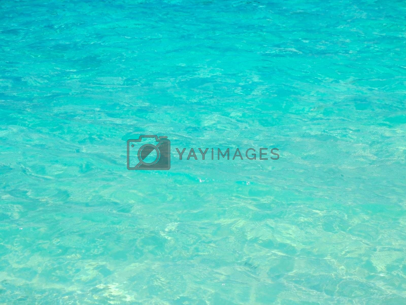 Blue Ocean Photo Background. Calm Ocean Waters. Nature Photo Collection.