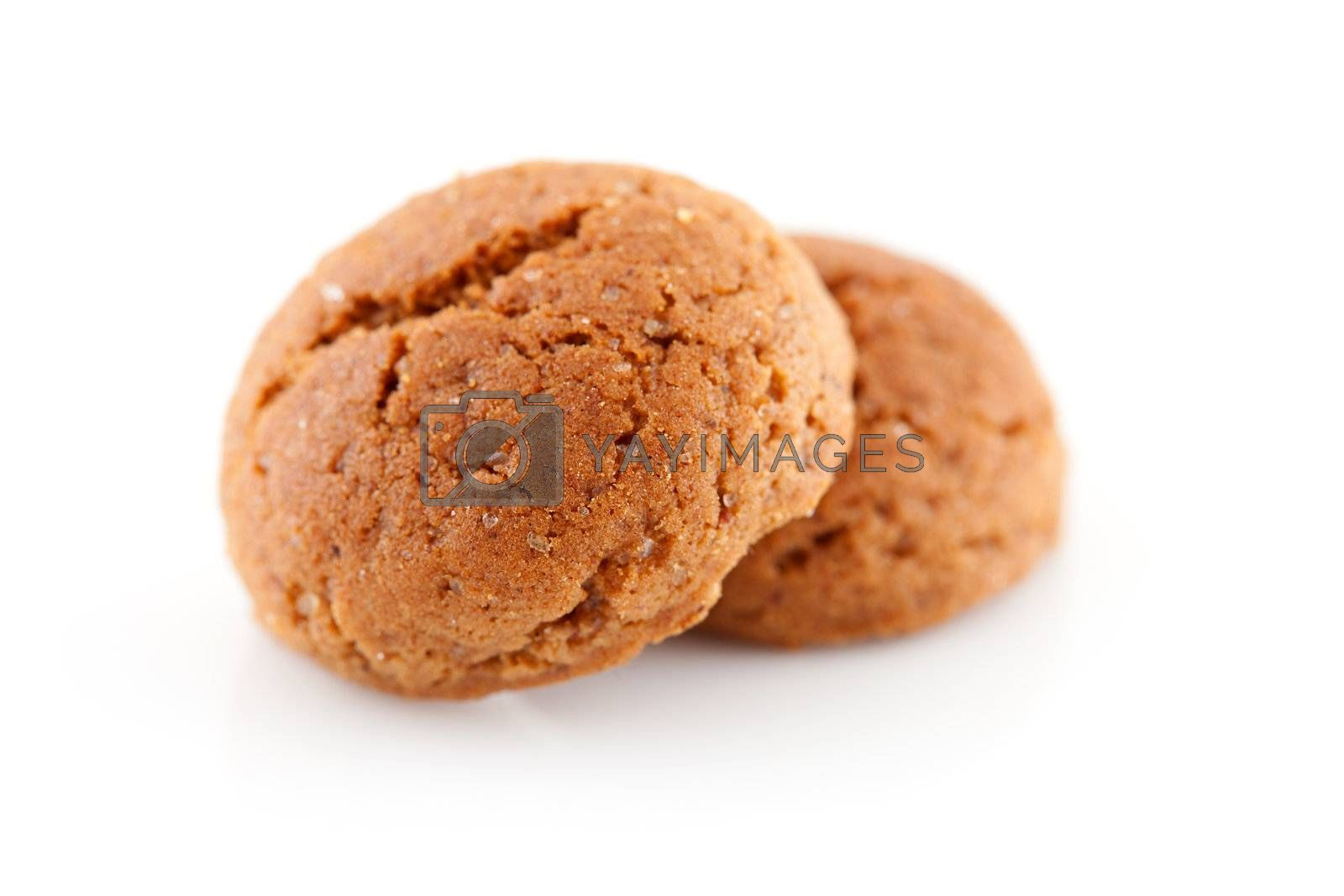 Two pepernoten (ginger nuts) sweets for typical Dutch festivity at 5 december in closeup over white background