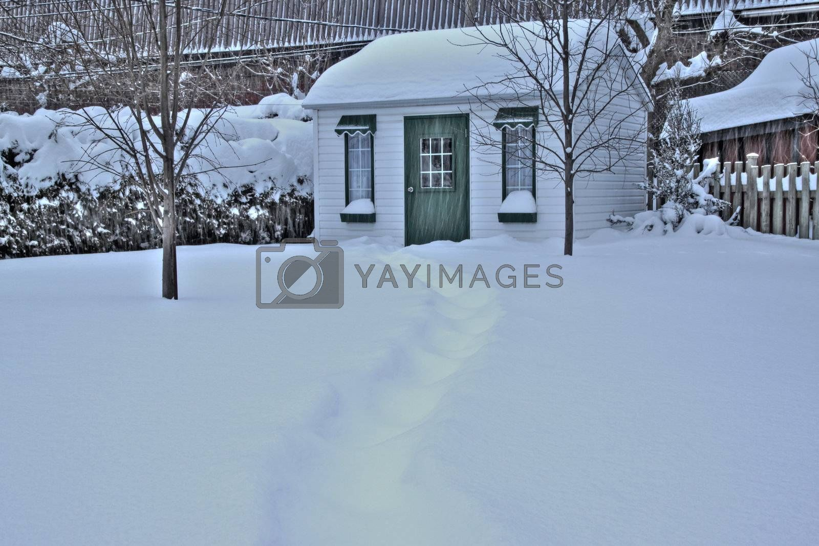 Snow path leading to back yard shed