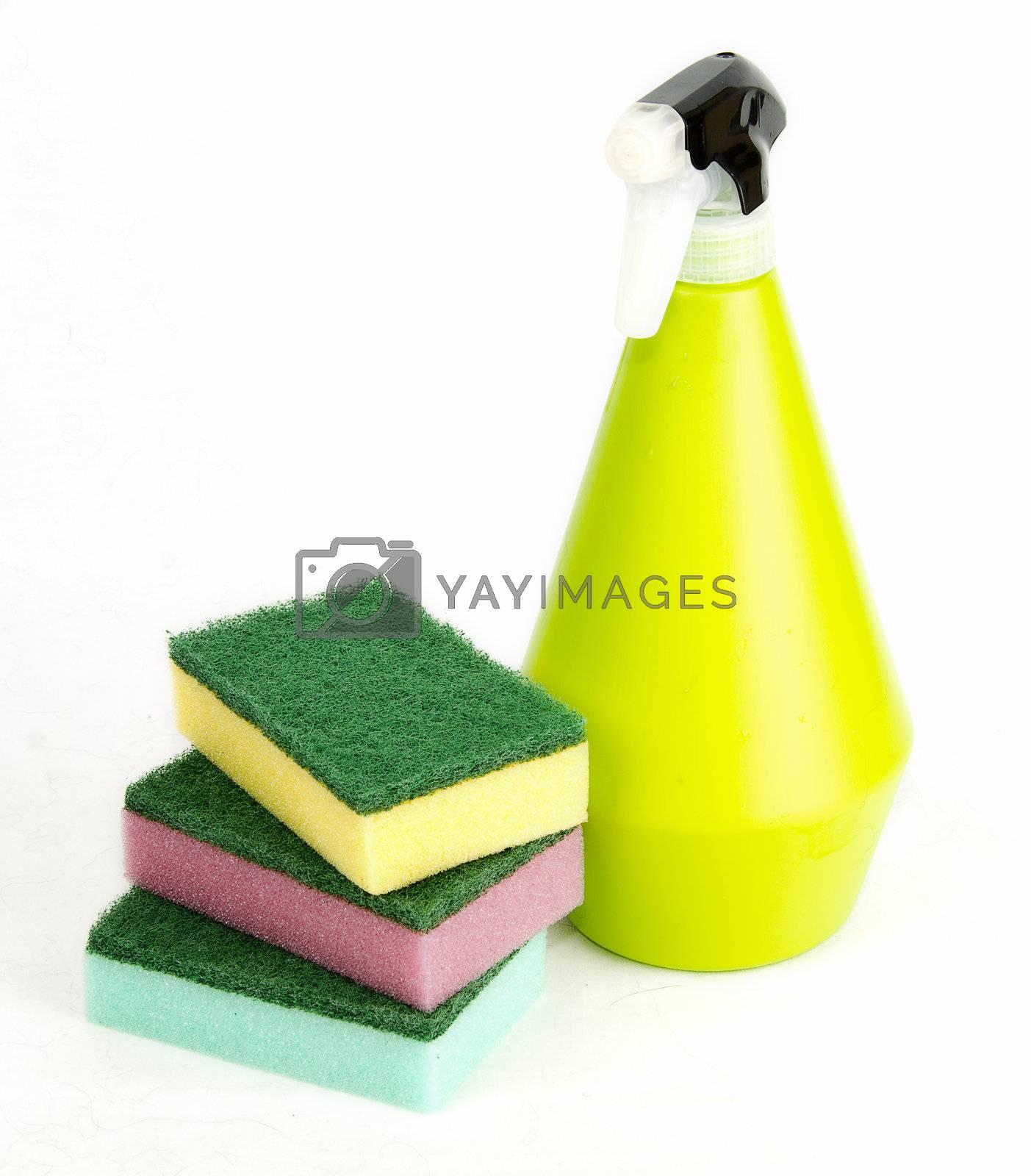 spunge and spray