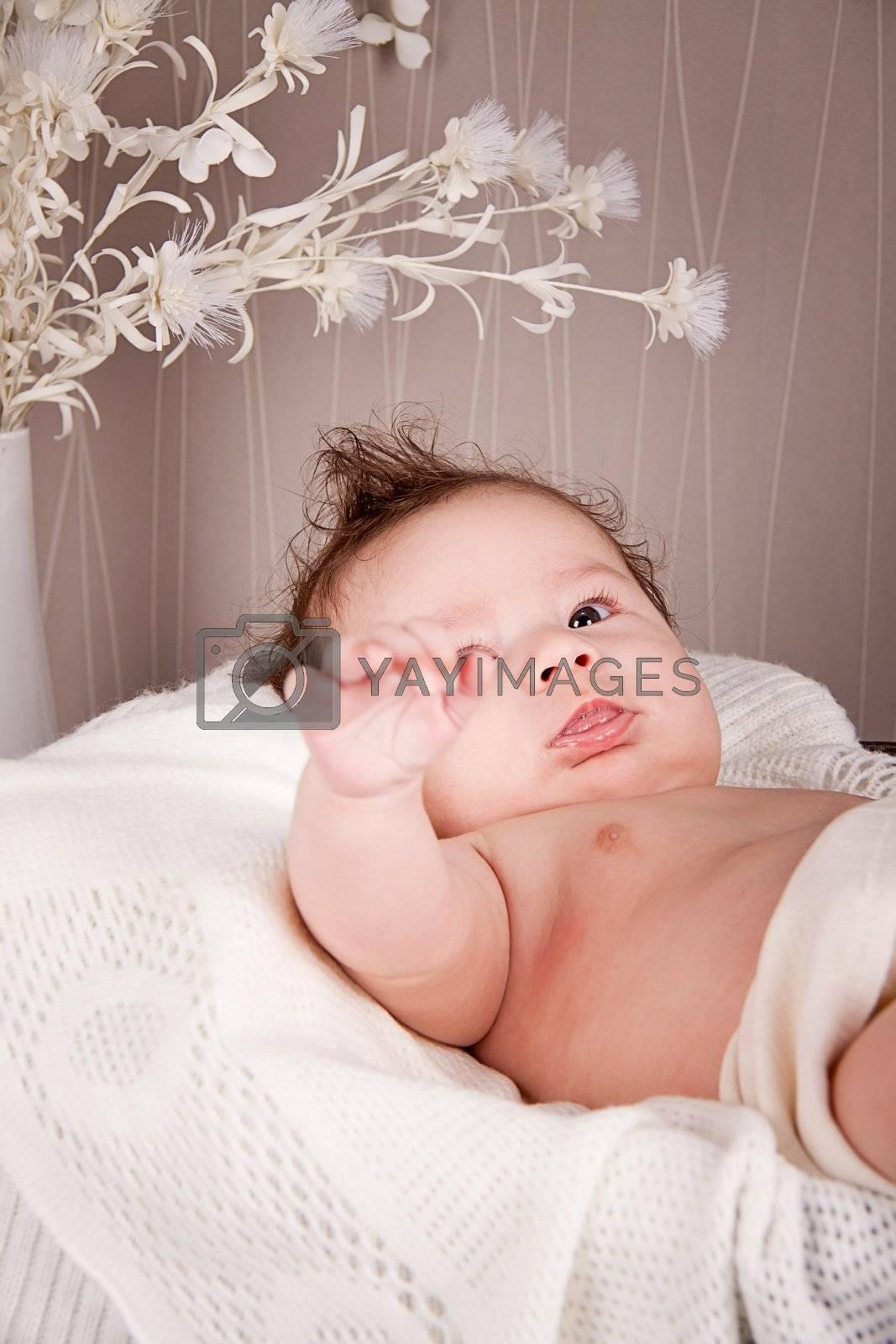 sweet little baby infant toddler on blanket in basket by juniart