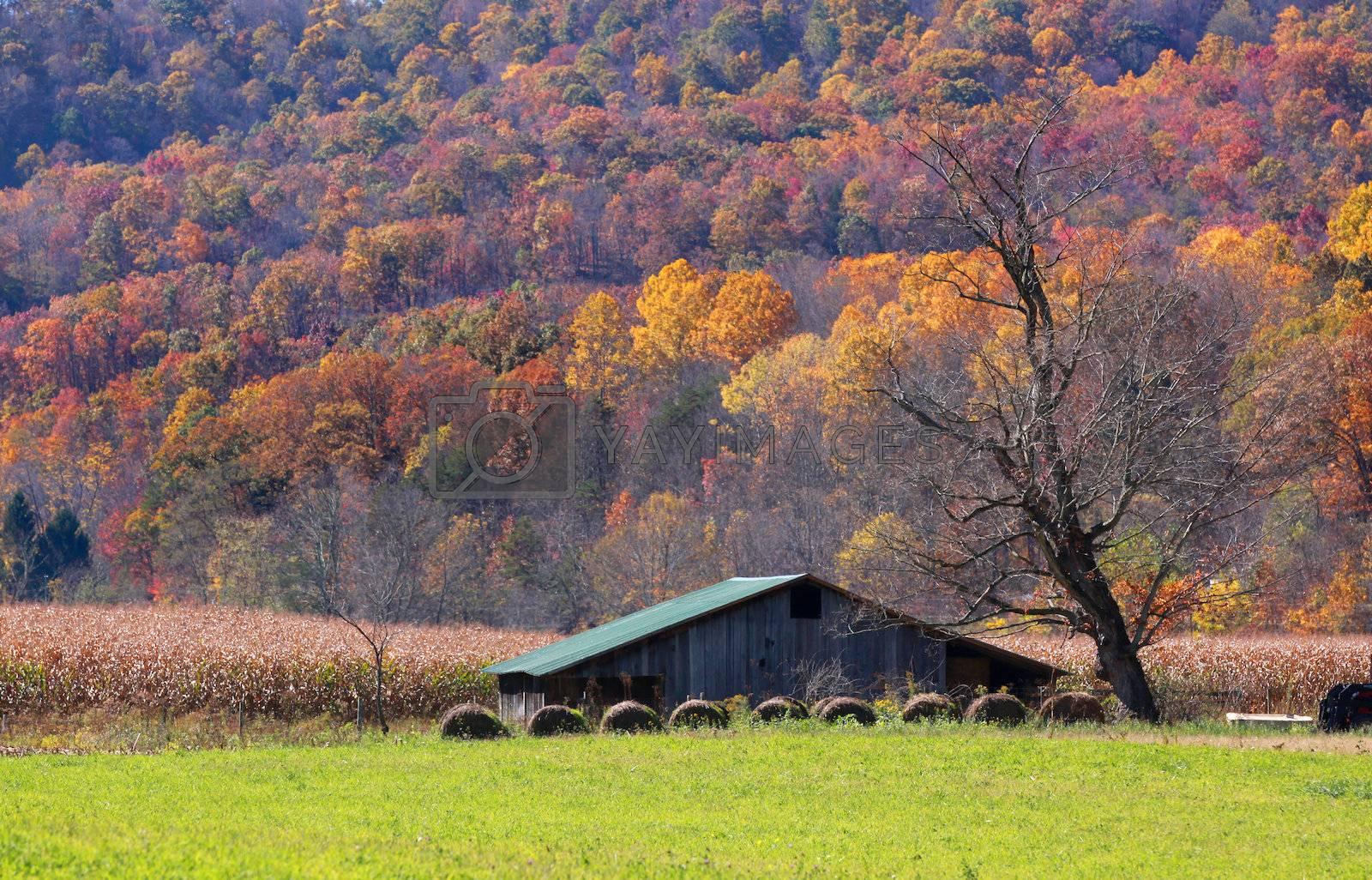 Farm lands in Appalachian mountains of West Virginia