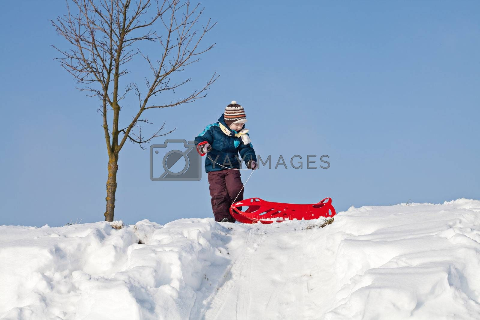 Little boy having fun with sledge on a snowy hill