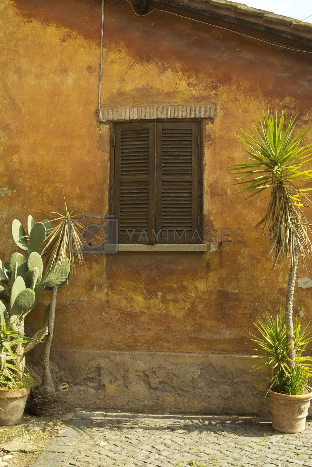 old paint  window
