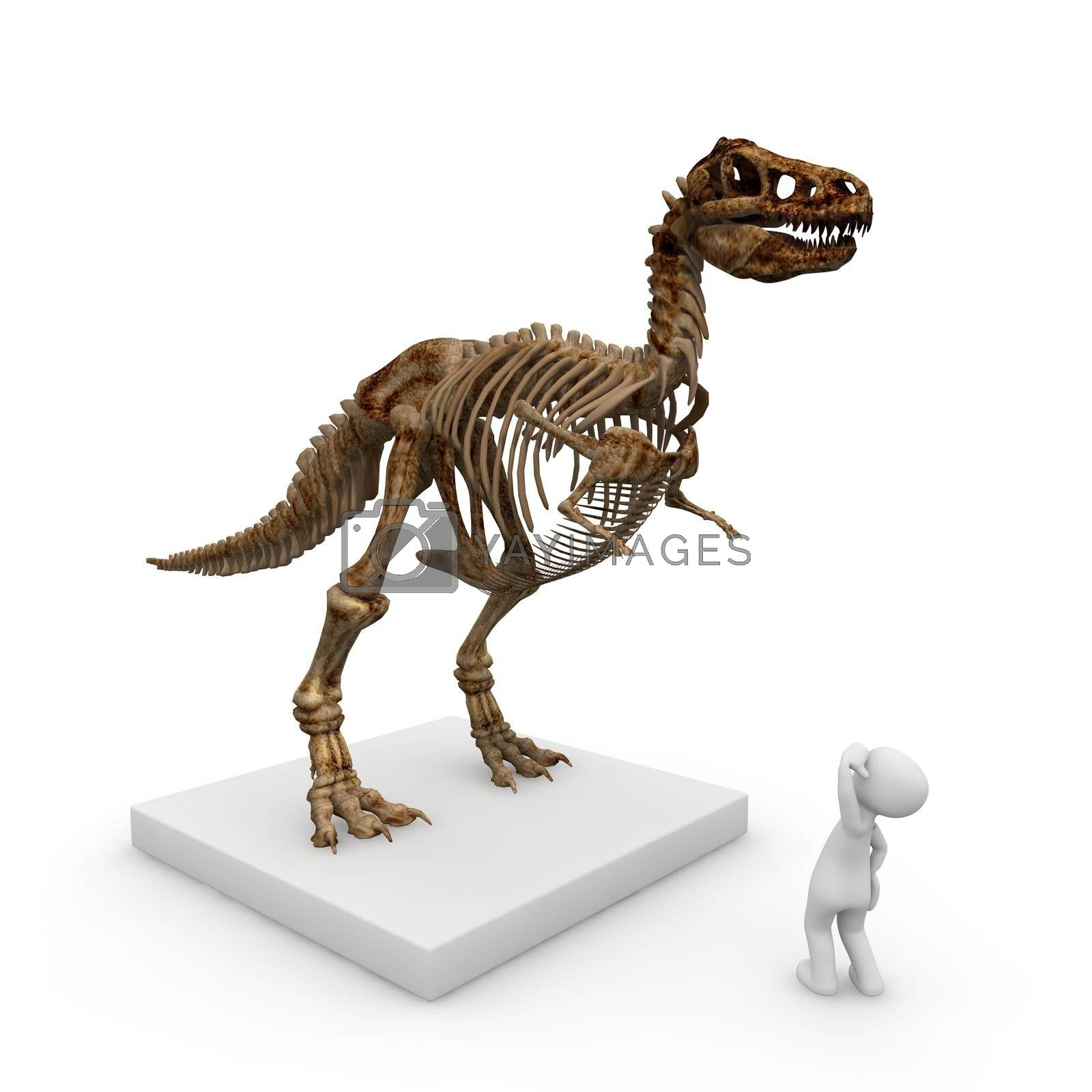 The skeleton of a dinosaur in the museum is a huge piece of the old exhibition