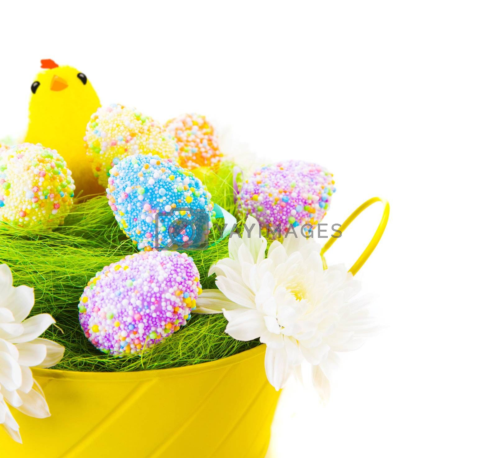 Beautiful colorful Easter eggs decorated with chicken toy isolated on white background, traditional christian eastertime symbol