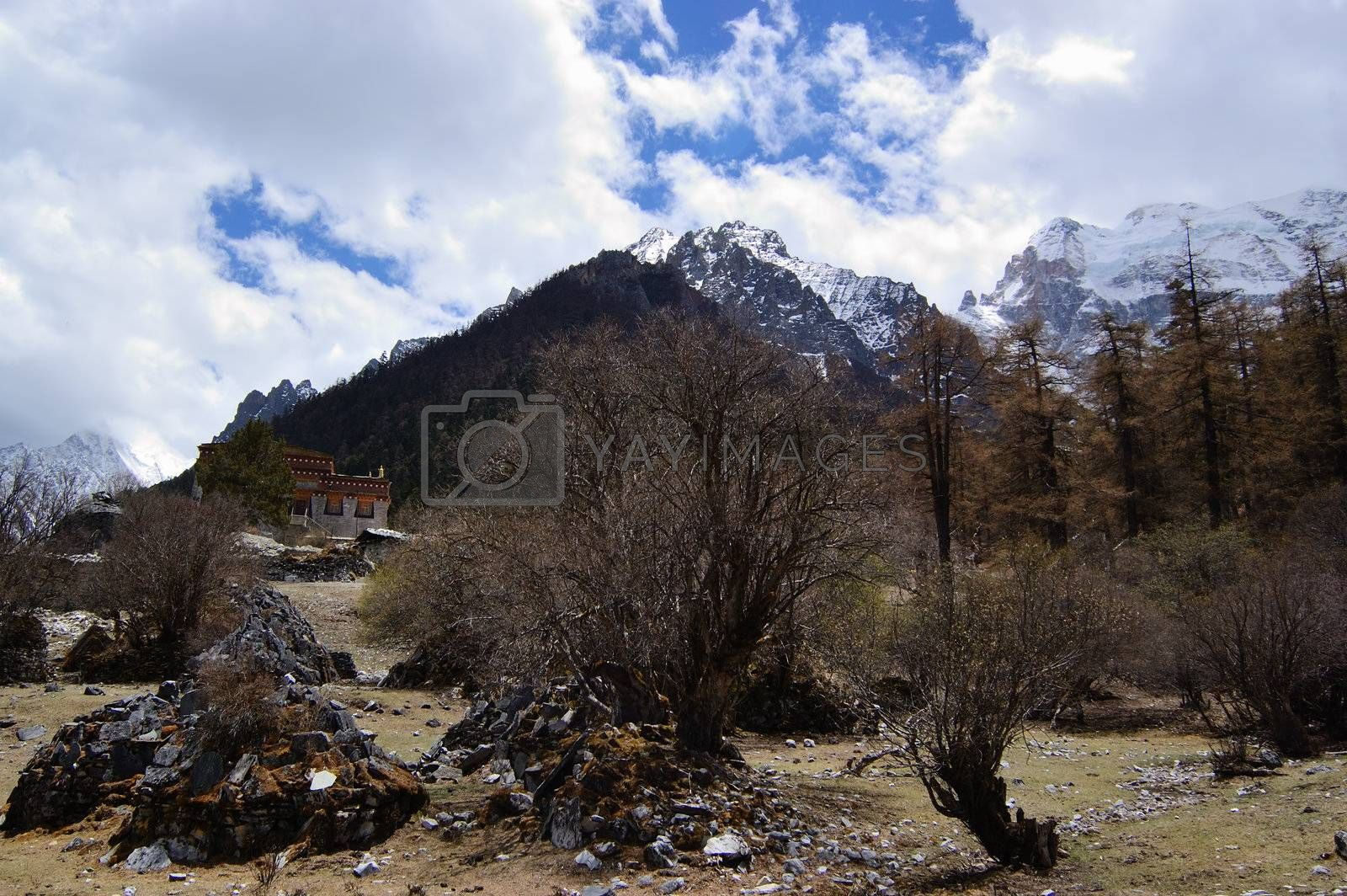 Tibetan mani stones  by snow mountain  in Daocheng,Sichuan Province, China