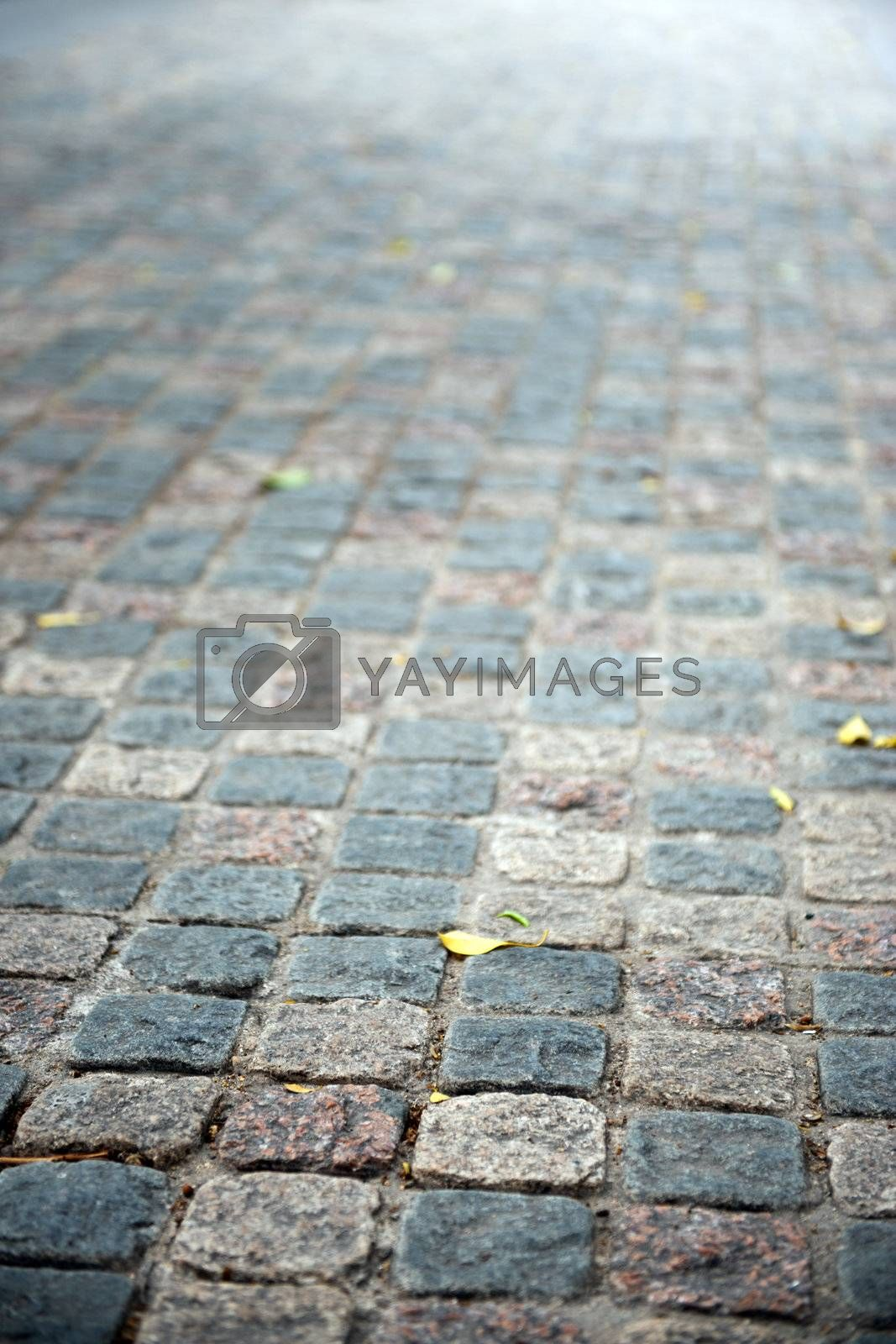 Flag stone path by raywoo