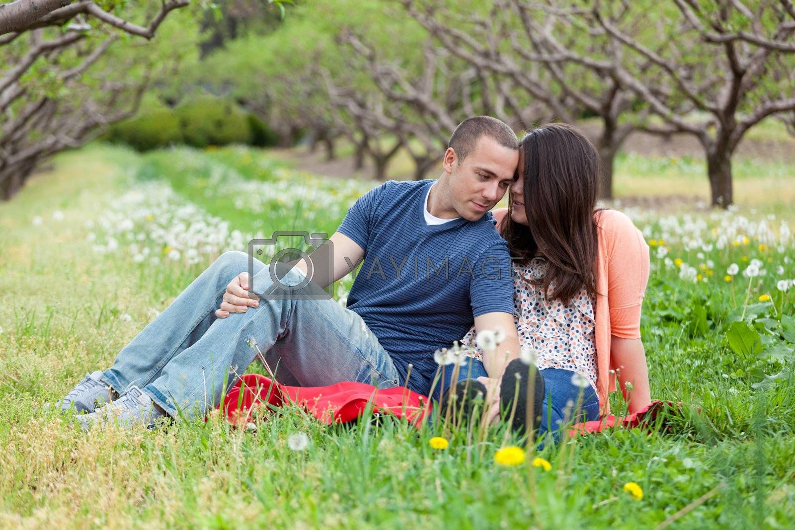 Young happy couple enjoying each others company outdoors on a picnic blanket in the middle of an apple orchard.