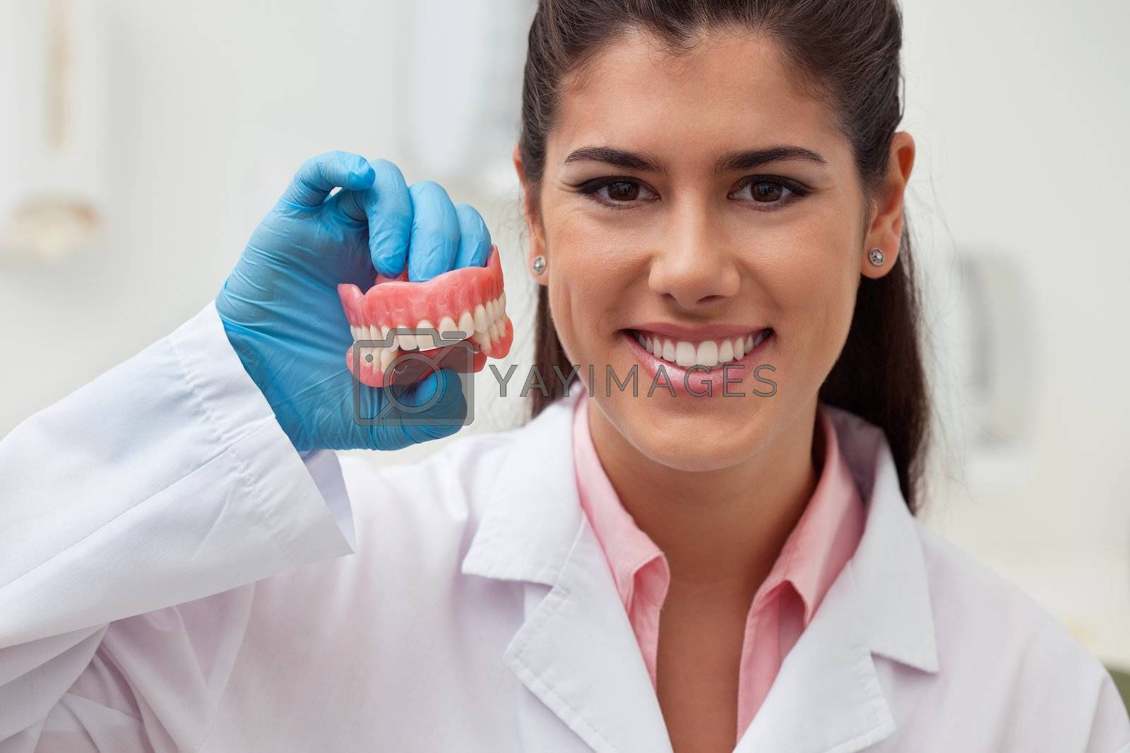 Portrait of female dentist holding dental mold at clinic