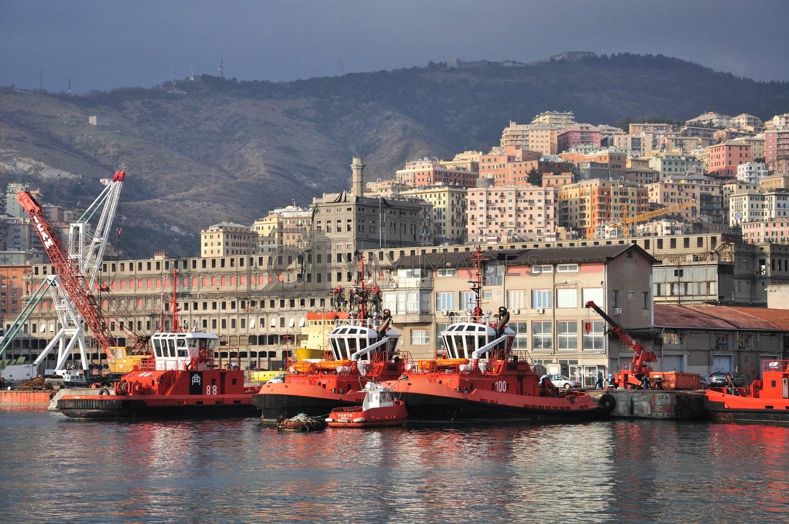 Cranes, boats, stock in Genoa.
