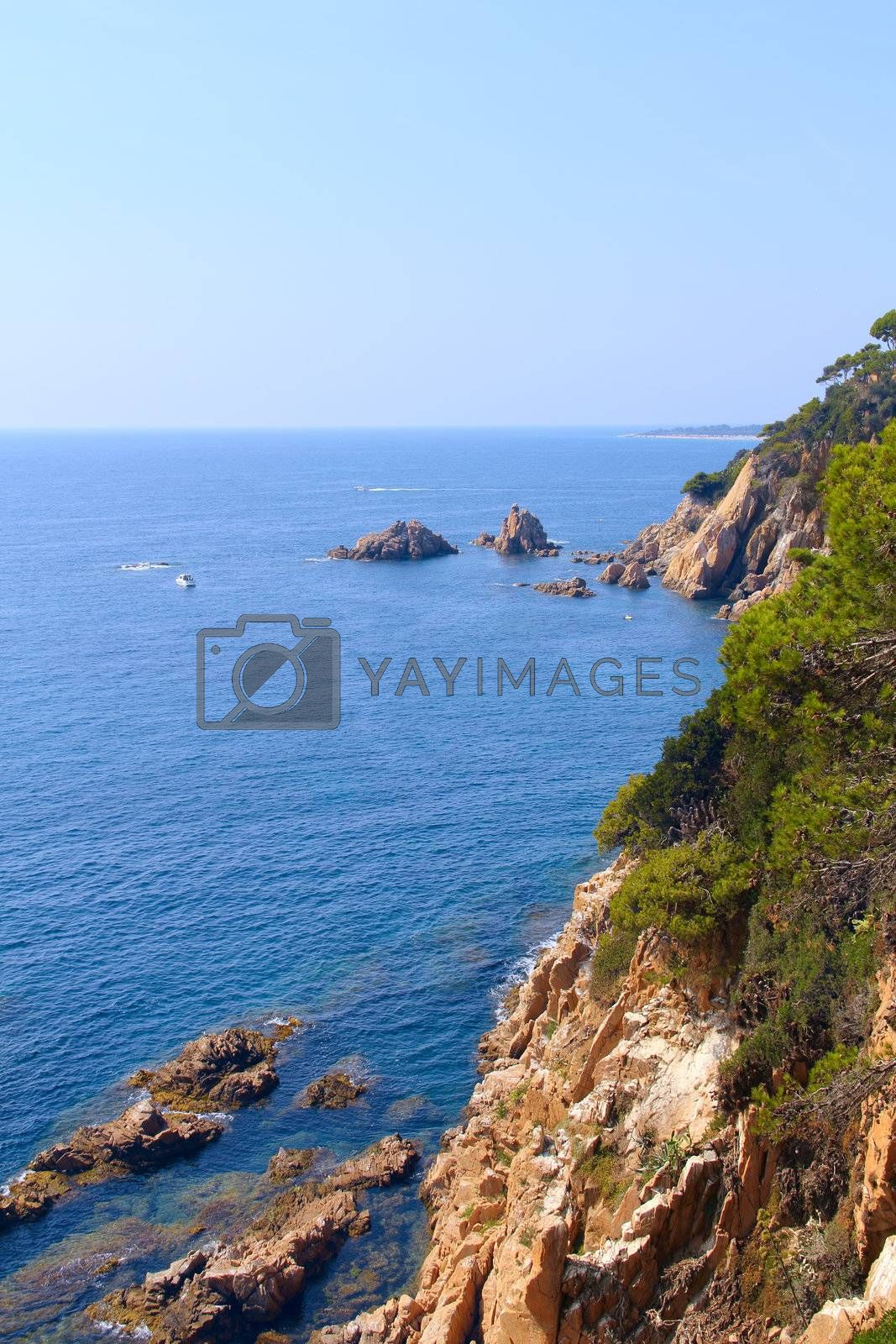 Spanish landscape with sea, rocks and pines at sunny day