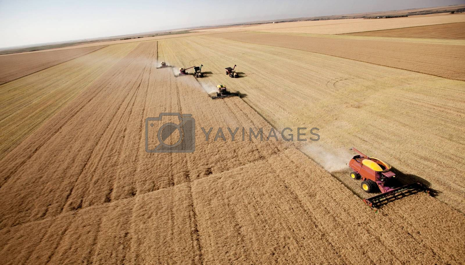 Combines on prairie landscape driving in formation